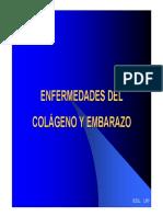 Enfermedades Del Col