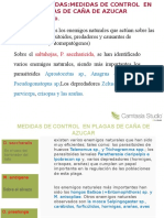 azucares exposicion  Camtasia Getting Started Guide.ppt