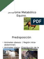 Sindrome Metablico equino
