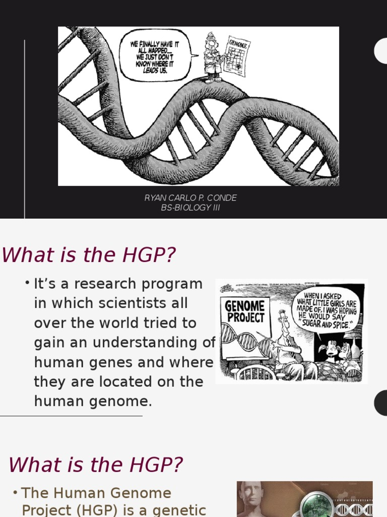 what is hgp