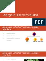 Alergia Hipersensibilidad