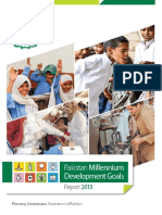 UNDP-Report13