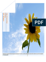 cisasummaryv10-1296889575622-phpapp02.pdf