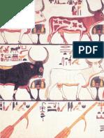 House-of-Eternity-The-Tomb-of-Nefertari.pdf