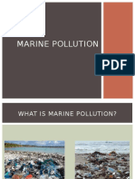 12-Group 12 Marine Pollution.pptx