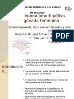 esteroidogenesis-141101172712-conversion-gate02.pptx