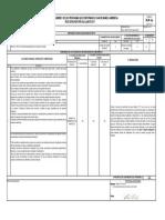Formato Ica 1a y 1b Aullador 2 St1a