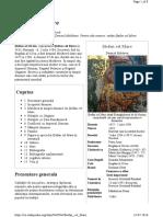 Ștefan_cel_Mare.pdf