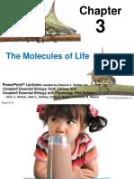 Molecules-of-Life.pdf