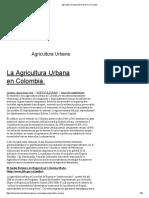 Agricultura Urbana _ El Huerto en La Ciudad