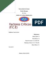 Factores Critico de Éxito