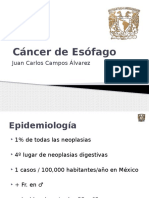 Cancerdeesofago Final 100302101055 Phpapp02