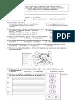 SEPTIMO - Evaluación mitosis