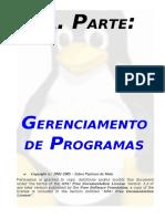 05 - E. Gerenciamento de Programas.pdf