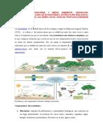 Universidad Peruana Los Andes1
