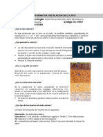 Ficha identificación de calicata