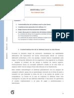 Defensa 33.pdf