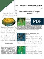 Cele 38 de Remedii-florale-bach Cu Imagini
