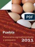 Panorama Agricola en Puebla _2011