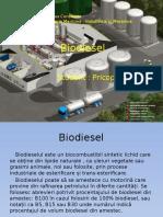 191483678 Biodiesel Prezentare