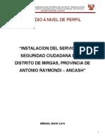 PROYECTO SEGURIDAD CIUDADANA_ANCASH.docx