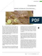 30Crustaceos.pdf