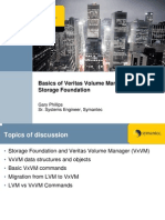 Basics of Veritas Volume Manager 043007