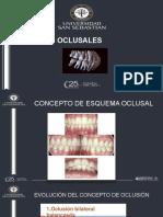 Presentacion esquemas oclusales