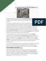 DENSIDAD EN EL CONCRETO.docx