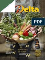 Experience Delta Summer 2016 Edition