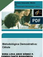 Demostrativa Celula