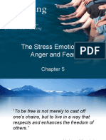 The Stress Emotions