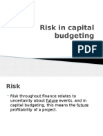 3.Capital Budgeting Risk Fms (1)