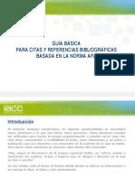 APA_IACC.pdf