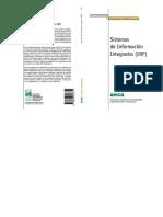 sistema de informacion intredos (ERP).pdf