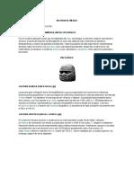 Historia de México UNAM Guía
