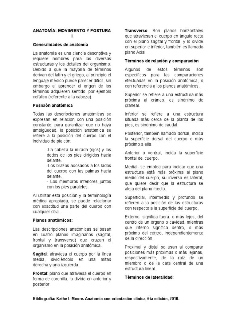 Guía Anatomía 1