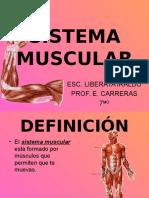 sistema-muscular-1204687836174898-3 (1)