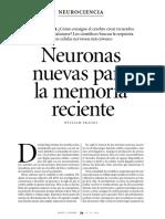 Neuronas Nuevas Para La Memoria Reciente