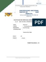 MERCOSUR FINAL.docx