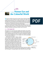 Sci10_11_human eye.pdf