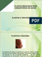 Plantas e Gravidez
