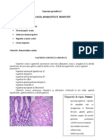 Lucrare Practica 2 digestiv