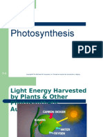 class 5 photosynthesis.ppt