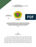 Laporan Kasus OMSK.docx