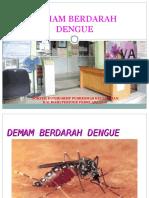 Penyuluhan Dbd Ready (2)