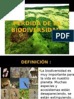 Perdida de La Biodiversidad-1
