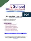 SQL-Server-Online-Training.pdf