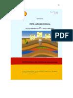 Core Analysis Manual