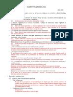 Examen Final Hidrologу__a -Correccion
